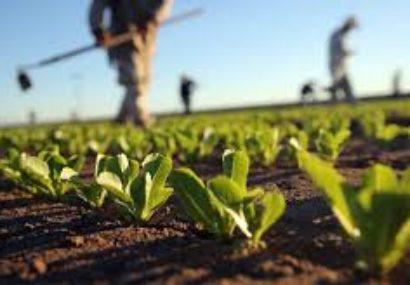Agricoltura in ripartenza nel 2018