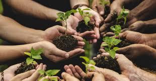 La lezione coesiva dell'agricoltura sociale
