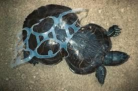 Plastica, inquinamento inarrestabile