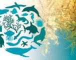 Biodiversità, emergenza senza voce