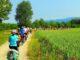 Cicloturismo, risorsa e nuovo modello di mobilità