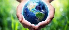 Biodiversità, attacco senza precedenti