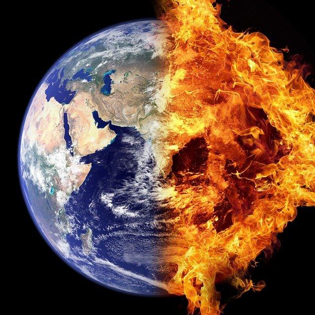 deterioramento degli ecosistemi e pandemia