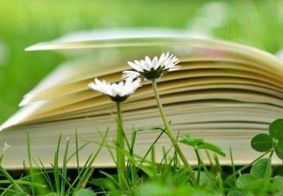 Libri che trattano di natura: anche la lettura è green