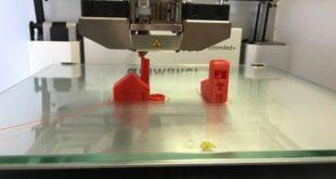 casa alveare stampata in 3D