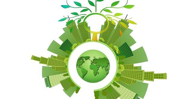 sostenibili aziende