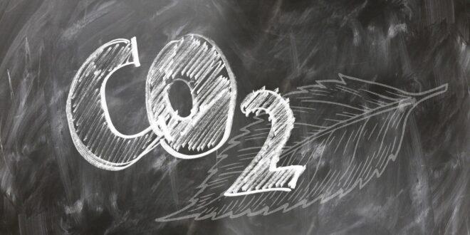 disuguaglianze delle emissioni di CO2