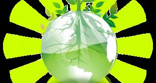 agricoltura biologica biodiversità