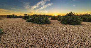 disastro cambiamenti climatici