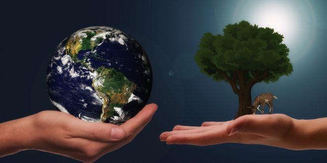 Decennio per il ripristino dell'Ecosistema