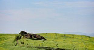 Toscana biologico