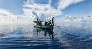 pesca green