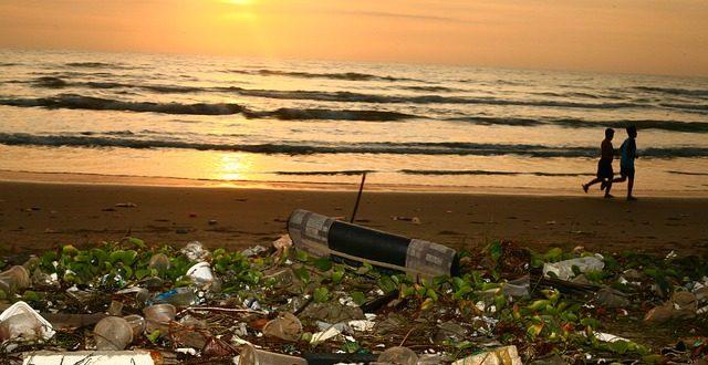 L'inquinamento da plastica costa
